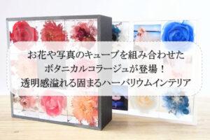 お花や写真のキューブを組み合わせたボタニカルコラージュが登場!透明感溢れる固まるハーバリウムインテリア